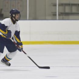Ishockey – en av Sveriges nationalsporter